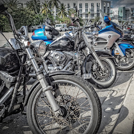 Line of Bikes by Ron DiLaurenzio - Transportation Motorcycles ( bike, wheels, miami, motorcycle, spokes )