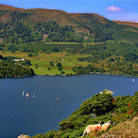 Ullswater by Wilson Beckett - Landscapes Travel (  )