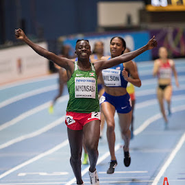 Winning with grace.  by Ron Russell - Sports & Fitness Running ( winning, athletics, indoor, racing, track, world champs )