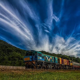 Kuranda Scenic Train by Callie Black - Transportation Trains ( kuranda, cairns, scenic train, redlynch, train trips )