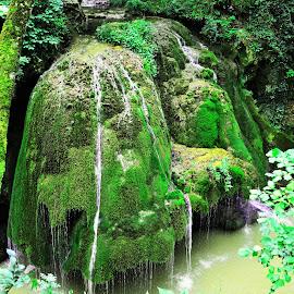 Bigar Waterfall by Dorin David - Nature Up Close Water ( nature, most beautiful, waterfall, romania, bigar )