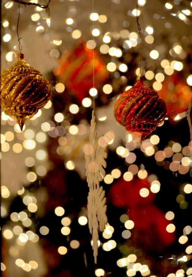 Christmas lights by Pamela Chandra - Public Holidays Christmas ( christmas lights, christmas )