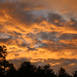 clouds  by Megan Gallup - Landscapes Weather ( clouds, orange, peaceful, sky, sunset,  )