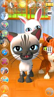 Talking 3 Friends Cats & Bunny
