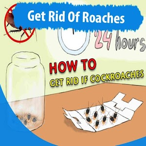 Download How To Get Rid Of Roaches For PC Windows and Mac