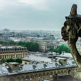 Watching from above !  by Nelida Dot - Buildings & Architecture Statues & Monuments ( clouds, paris, statue, city view, art, artistic objects, architecture )