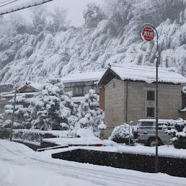 Kanazawa the Snow Kingdom by Yudawa Suseno - Landscapes Weather (  )