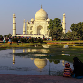 Symbol by Arun Karanth - Buildings & Architecture Statues & Monuments ( history, reflection, symbol, taj mahal, trees, monument, india, uttar pradesh, morning, people )