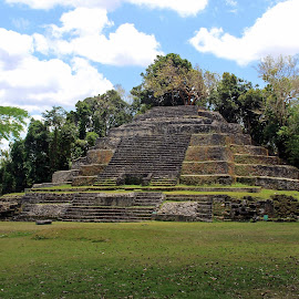 Jaguar Temple by Tony Huffaker - Buildings & Architecture Decaying & Abandoned ( belize, pyramid, temple, lamanai, ancient, mayan )