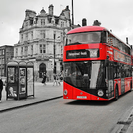 New Routemaster by Stephen Ridout - Transportation Other ( routemaster borismaster bus red london camden )