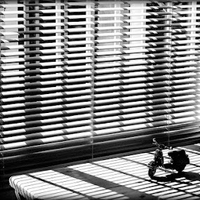 Parked. by Dave Ross - Abstract Patterns ( resting, b&w, waiting, blinds, parked )