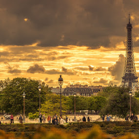 Evening in Paris  by Artur Jakutsevich - City,  Street & Park  Vistas ( paris, france )