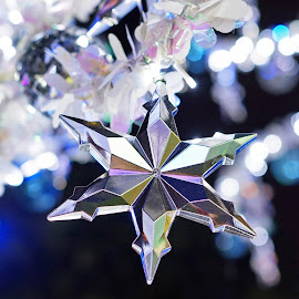 Brightest Star by Alice Chia - Public Holidays Christmas ( clear, white, star, crystal, bokeh, glitter )
