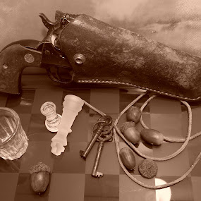 Wild Wild South by Jeannie Love - Novices Only Objects & Still Life ( southern, nature, still life, western, gun )