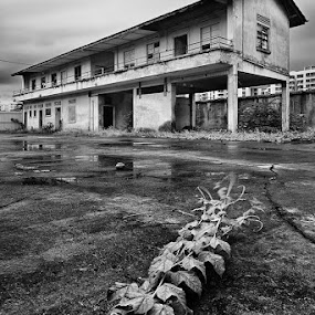 The Guesthouse by Jonathan Danker - Buildings & Architecture Other Exteriors ( singapore abandoned house monochrome stormy long exposure )