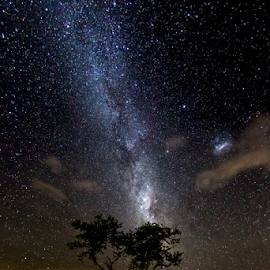 Night of the Stars by Peter de Groot - Landscapes Starscapes ( awesome, best, way, winner, night, ©pdgpix - peter de groot, milky, weenan )