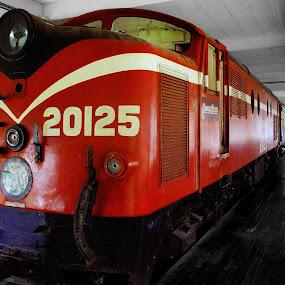 Old Locomotive at Shah Alam Museum by Mohd Rashidin Ideres - Transportation Trains ( locomotive, train, bunga raya, shah alam museum )