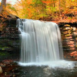 by Gene Walls - Landscapes Forests ( water, stream, kitchen creek, cliff, waterfall, leaves, usa, ricketts glen, autumn, falls, fall, creek, state park, trees, harrison wright falls )