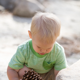 Pinecone Ponderance by M Knight - Babies & Children Toddlers ( pinecone, sand, blonde, nature, green shirt, candid, beach, toddler, rocks, boy, people, portrait )