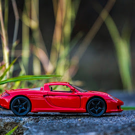 Porsche Carrera GT by Ohmz Pineda - Artistic Objects Toys (  )