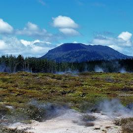 New Zealand by Sarah Harding - Novices Only Landscapes ( nature, outdoors, novices only, landscape, new zealand )