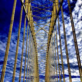 Bridge by Rio Karisman - Instagram & Mobile Android