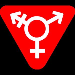 MyLady - Transgender Dates For PC