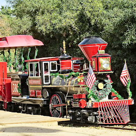 Christmas Train by Nancy Young - Public Holidays Christmas ( holiday, decoration, christmas, train, transportation )