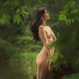Nymph river by Dmitry Laudin - Nudes & Boudoir Artistic Nude ( girl, nude, summer, forest, hair, light, river )