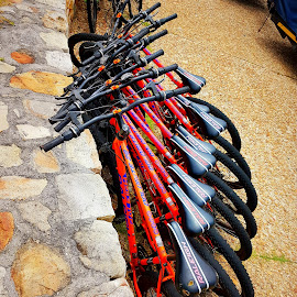 Having your bikes all in a row by Hayley Moortele - Sports & Fitness Cycling ( #bikes, #exploring, #cycling, #red,  )