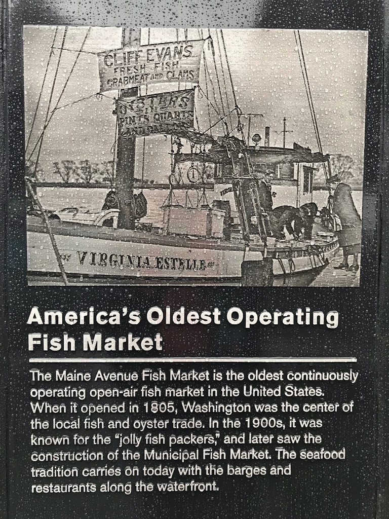America's Oldest Operating Fish MarketThe Maine Avenue Fish Market is the oldest continuously operating open-air fish market in the United States. When it opened in 1805, Washington was the center of ...