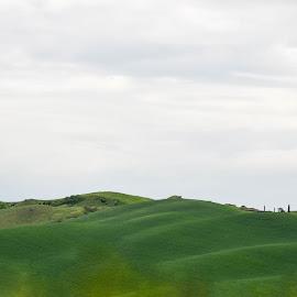 by Simona Ciglenean - Landscapes Prairies, Meadows & Fields