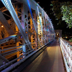 Bridge by Darius Apanavicius - Buildings & Architecture Bridges & Suspended Structures ( constructions, night, bridge, structures, city, lights, city at night, street at night, park at night, nightlife, night life, nighttime in the city )
