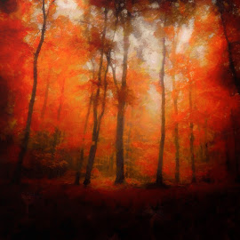 Autumnal Blaze by Luke Walker - Painting All Painting ( red, fall colors, nature, fall, trees, oil art )