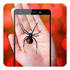 Spider On Hand Camera Prank