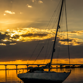 End of Good Times by Robert Willson - Landscapes Sunsets & Sunrises ( water, bird, old sailboat, old, bidge, bay, sunrise, sailboat, osprey, aground )