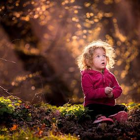 Child Wonder by Mike DeMicco - Babies & Children Child Portraits ( babies, innocent, beautiful, little, cute, woods, pretty, portrait, child, love, sweet, girl, wonder, adorable, pink, light )