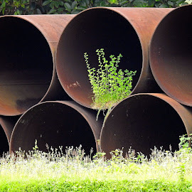 Pipes by Asif Bora - Artistic Objects Industrial Objects