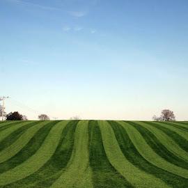 Turf Love by Huw Evans - Landscapes Prairies, Meadows & Fields (  )