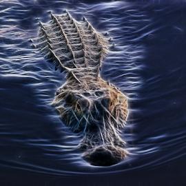 Approaching Alligator by Joe Saladino - Digital Art Animals ( water, digital manipulation, alligator, reptile, animal )