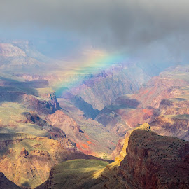 Grand Canyon Rainbow by Chad Roberts - Landscapes Deserts ( national park, desert, colors, chad roberts, chadseyes, image, chadroberts.blogspot.com, landscape, rainbow, photography, grand canyon )
