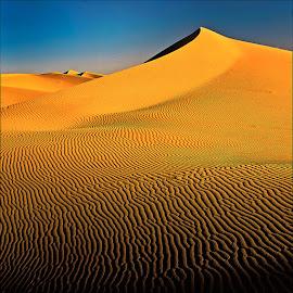 Endless Sahara by Damjan Voglar - Landscapes Deserts