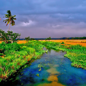 Monsoon in India- First impression by Prasant Kumar - Landscapes Prairies, Meadows & Fields