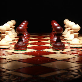 Chess pieces by Peter Salmon - Artistic Objects Toys