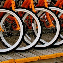 IMG_3985.JPG copy by Joe Rahal - Transportation Bicycles