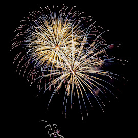 Fireworks # 45 by Vinod Kalathil - Abstract Fire & Fireworks ( abstract, california, fireworks, night )