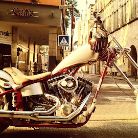 The Majesty by Jayaananth Konerirajapuram Gopalaswamy - Transportation Motorcycles ( harley davidson, famous, europe, motorbike, majestic, stylish bike, international, germany, transportation )