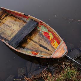 Abandoned boat by Michal Fokt - Transportation Boats ( boat, abandoned )
