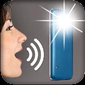 Speak to Torch Light APK for Bluestacks