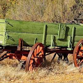 Old wagon by Gaylord Mink - Transportation Other ( wagpn, wheels, tongue, transportation )